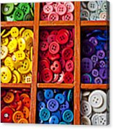 Compartments Full Of Buttons Acrylic Print by Garry Gay