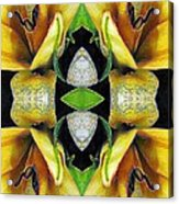 Compassion - Card X From The Tarot Of Flowers Acrylic Print