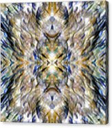 Complexity Of Creation Acrylic Print