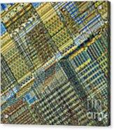 Computer Chip Acrylic Print