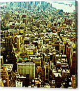 Concrete Jungle Acrylic Print