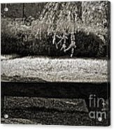 Concurrence Of Causes Acrylic Print