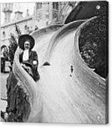 Coney Island: Slide Acrylic Print