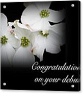 Congratulations On Your Debut - White Dogwood Blossoms Acrylic Print
