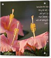 Consider The Lilies How They Grow Acrylic Print