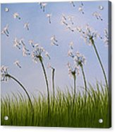 Contemporary Landscape Art Make A Wish By Amy Giacomelli Acrylic Print