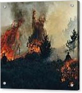 Controlled Fires Burn Eagerly In Small Acrylic Print by Melissa Farlow