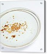 Cookies Crumbs In An Empty Plate Acrylic Print