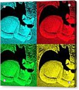 Cool Cat Pop Art Acrylic Print