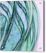 Cool Curves Acrylic Print