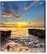 Coral Tides Acrylic Print