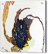 Coriolis Acrylic Print