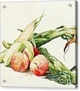 Corn And Peaches Acrylic Print