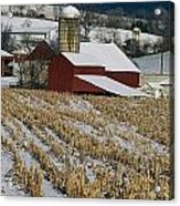 Corn Stubble And Barn In A Wintery Acrylic Print