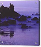 Corona Del Mar 5 Acrylic Print