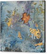 Cosmic 25 No.1 Acrylic Print by Rita Bentley