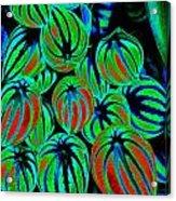 Cosmic Watermelon Leaves Acrylic Print