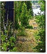 Cottage 999 Acrylic Print by Cyryn Fyrcyd