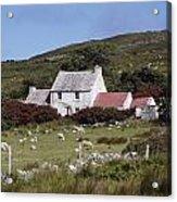 Cottage, Ireland Acrylic Print