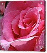 Cotton Candy Pink Acrylic Print
