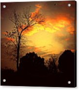 Cottonwood Sunset Acrylic Print