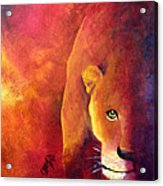 Cougar - Out Of The Shadows Acrylic Print