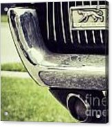 Cougar Time Acrylic Print
