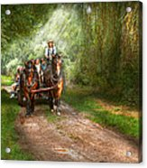 Country - Horse - The Hay Ride  Acrylic Print