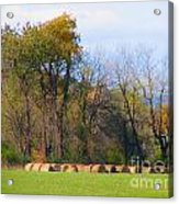 Country Bails Acrylic Print