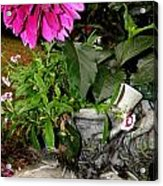 Country Flower Booties Acrylic Print