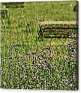 Country Gardens Acrylic Print
