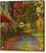 Country Lane Acrylic Print