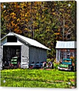 Country Life Acrylic Print by Steve Harrington