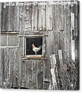 Country Living Acrylic Print