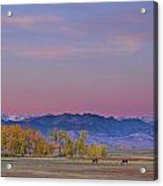 Country Morning Acrylic Print