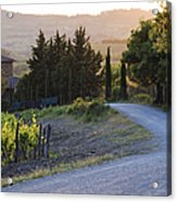 Country Road At Sunset Acrylic Print