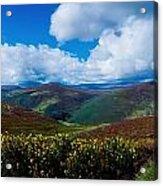 Country Road, Near Luggala Mountain, Co Acrylic Print