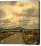 Country Road With Wildflowers Acrylic Print