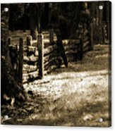 Country Romance Acrylic Print by Terrie Taylor