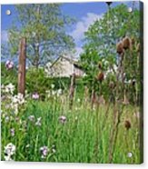 Country Side Acrylic Print