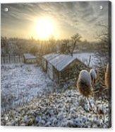 Country Snow And Sunrise Acrylic Print by Yhun Suarez