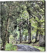 County Roads Acrylic Print