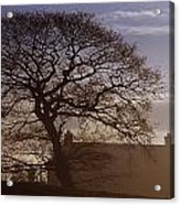 County Tyrone, Ireland Winter Morning Acrylic Print