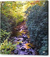 Courthouse River In The Fall 3 Acrylic Print