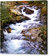 Courthouse River In The Fall Filtered Acrylic Print