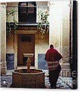 Courtyard Visitor Acrylic Print