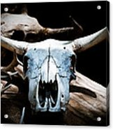 Cow Skull In Shade Acrylic Print