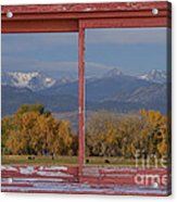 Cows Life Colorado Autumn Rocky Mountains Picture Window Art Acrylic Print