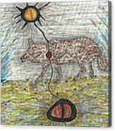 Coyote Spirituality Acrylic Print