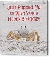 Crab Happy Birthday Acrylic Print